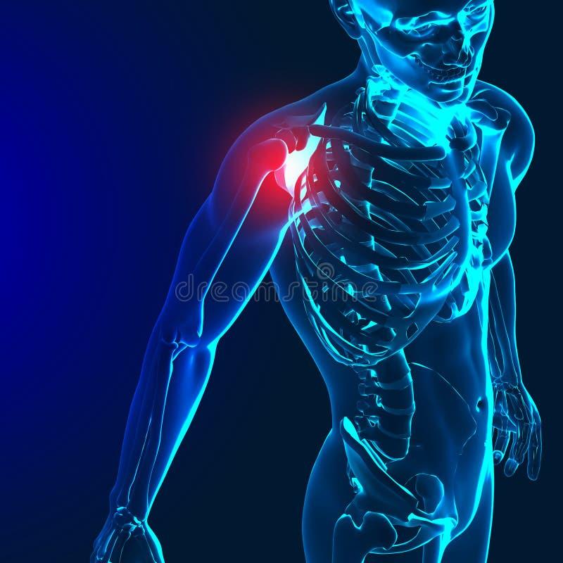3d geef van een medisch beeld met pijnlijke schouder, elleboog en spi terug stock illustratie