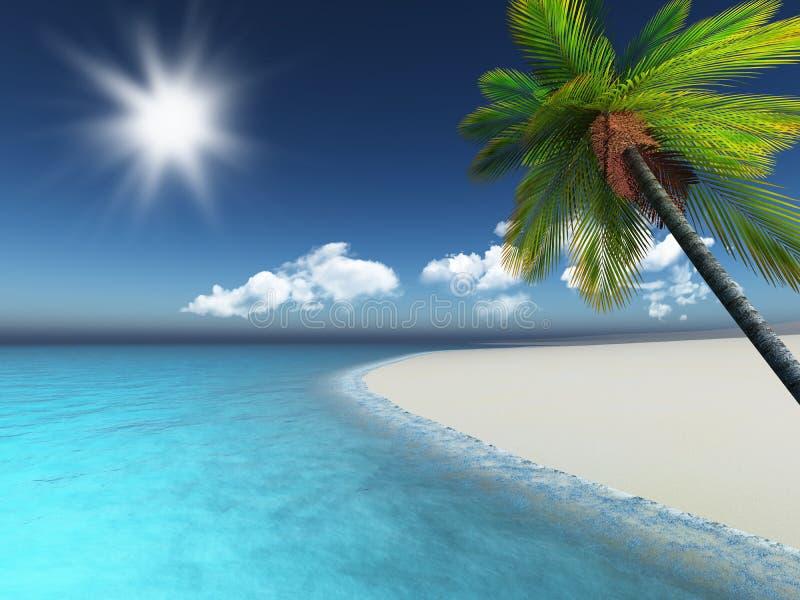 3D geef van een palm op een zandig strand terug royalty-vrije illustratie