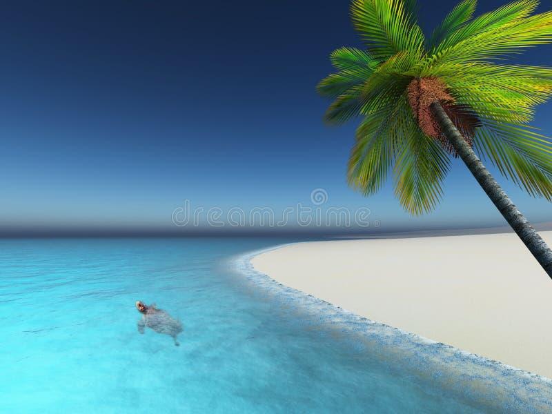 3D geef van een schildpad in het overzeese palmstrand terug vector illustratie