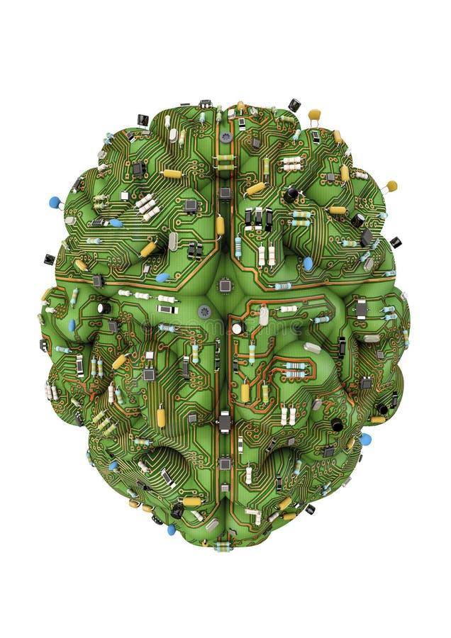 De hersenen van de kring