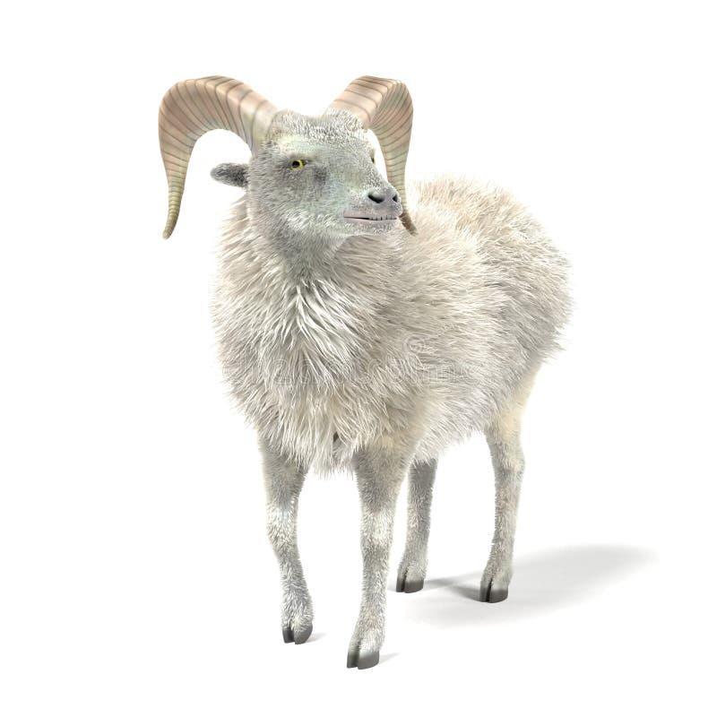 3D geef van Ram terug vector illustratie
