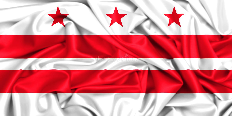 D golvende vlag van Washington D C Het District van Colombia stock illustratie