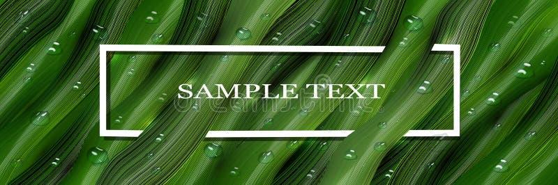 3d, gotitas de agua y voluminoso tridimensionales, las hojas verdes en el estilo de realismo bandera realista, pantalla de la web ilustración del vector