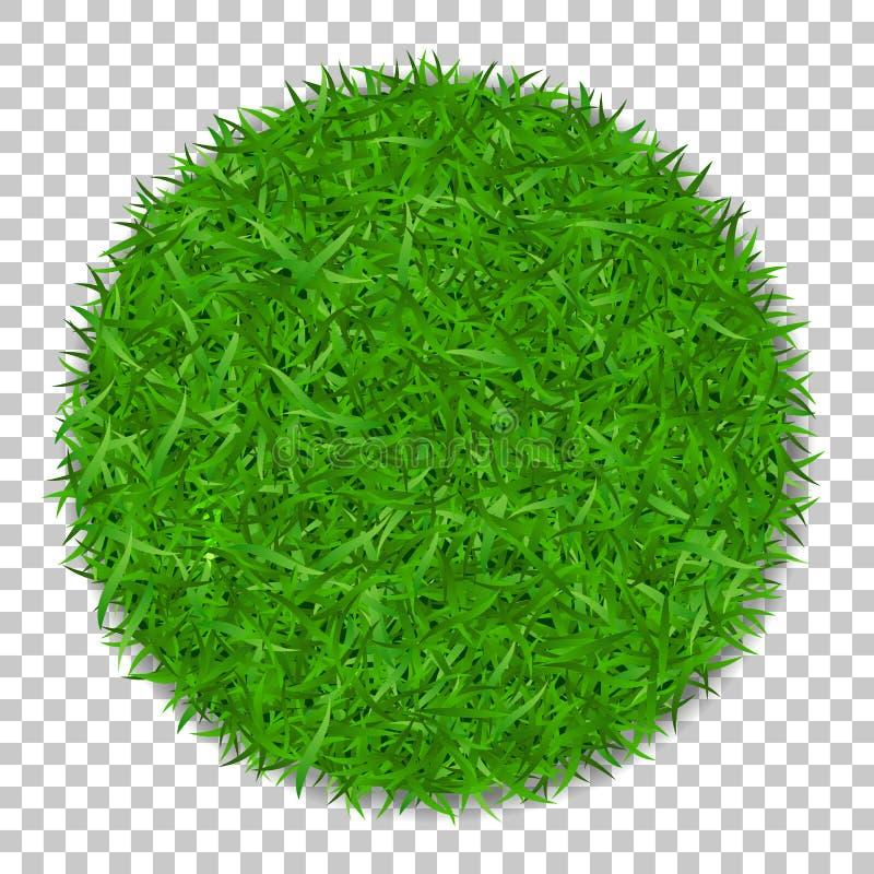 3D grascirkel De groene installatie, grasrijk rond gebied, isoleerde witte transparante achtergrond Symbool van vers bolgebied, royalty-vrije illustratie