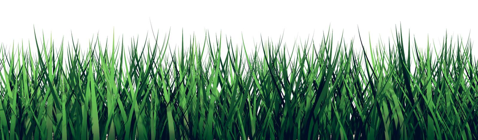 3D grass on a white background stock illustration