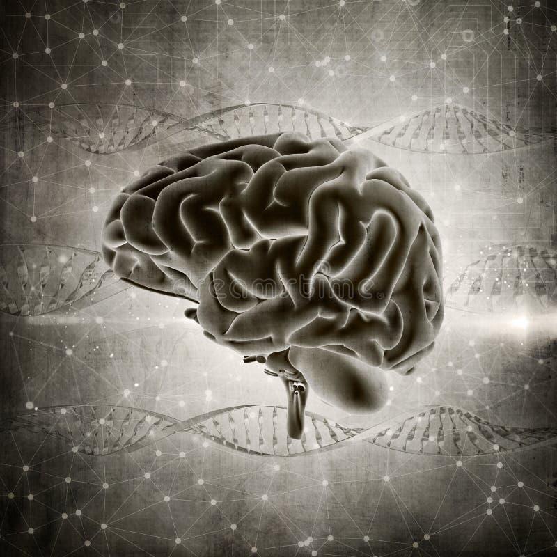 3D grunge stylu móżdżkowy wizerunek na DNA splata tło ilustracji