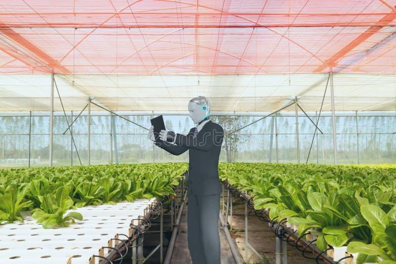 3d het maken van een kunstmatige intelligente robot werkt in een slimme boerderij, landbouwconcept, robot werkt voor verhoogde pr royalty-vrije stock foto