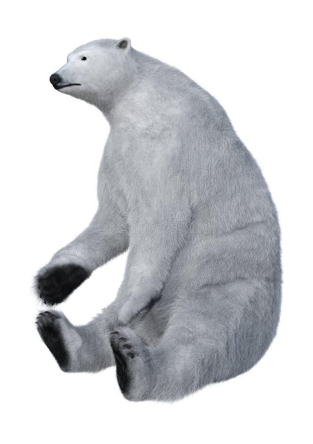 3D het Teruggeven Ijsbeer op Wit royalty-vrije stock afbeeldingen