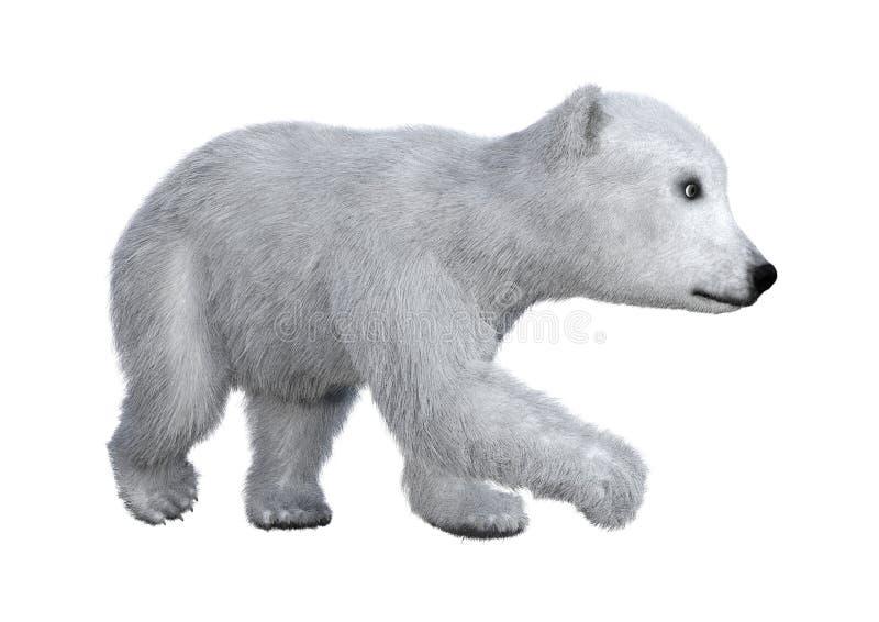 3D het Teruggeven Ijsbeerwelp op Wit vector illustratie
