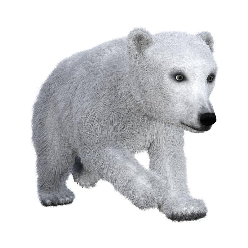 3D het Teruggeven Ijsbeerwelp op Wit stock illustratie
