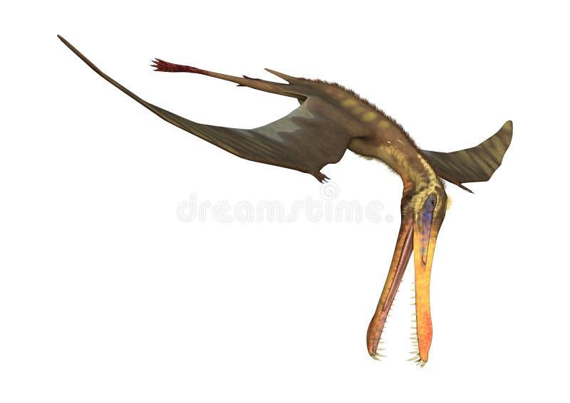 3D het Teruggeven Pterodactylus Anhanguera op Wit royalty-vrije illustratie
