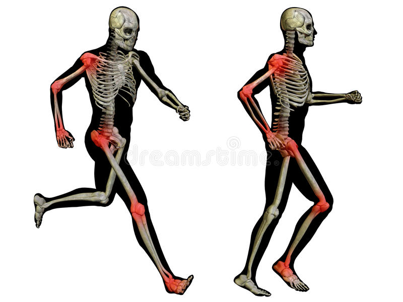 Conceptual 3D Human Man Anatomy Joint Pain Body Isolated