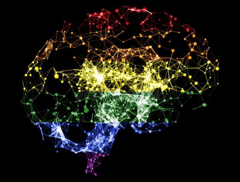 3D illustratie - Hersenenillustratie aan LGBT-kleur stock illustratie