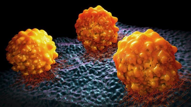 3d illustratie van drie sinaasappel gekleurde kankercellen royalty-vrije illustratie