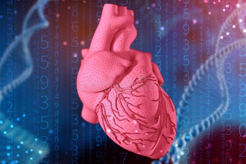 3d illustratie van menselijk hart op futuristische blauwe achtergrond Digitale technologieën in geneeskunde royalty-vrije illustratie
