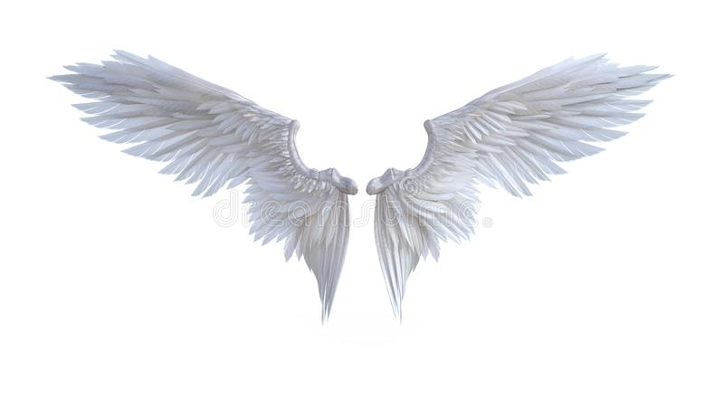 Angel wings. 3d Illustration Angel wings, white wing plumage isolated on white background vector illustration