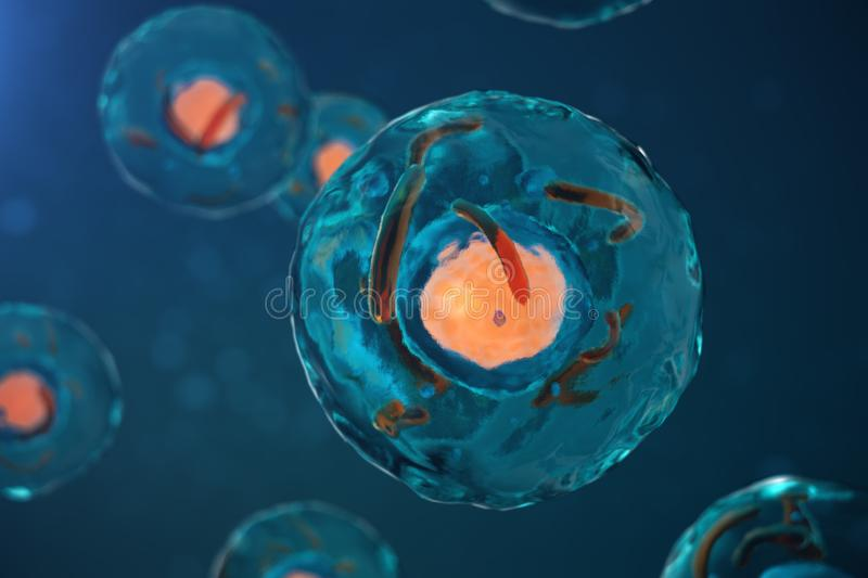 3D illustration cell of a living organism, scientific concept. Illustration on a blue background. The structure of the royalty free illustration