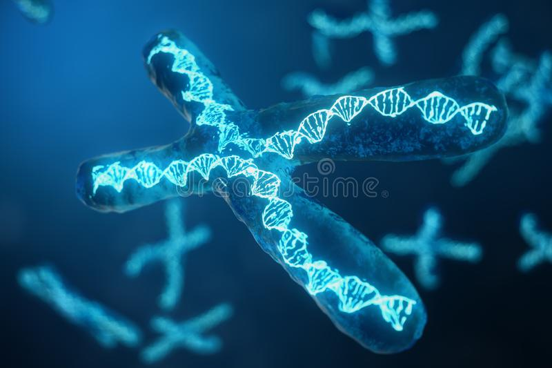 3D illustration X-Chromosomes with DNA carrying the genetic code. Genetics concept, medicine concept. Future, genetic. Mutations. Changing the genetic code at vector illustration