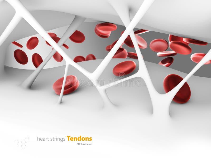 3d Illustration of heart strings Tendons, inside the human heart.  royalty free illustration
