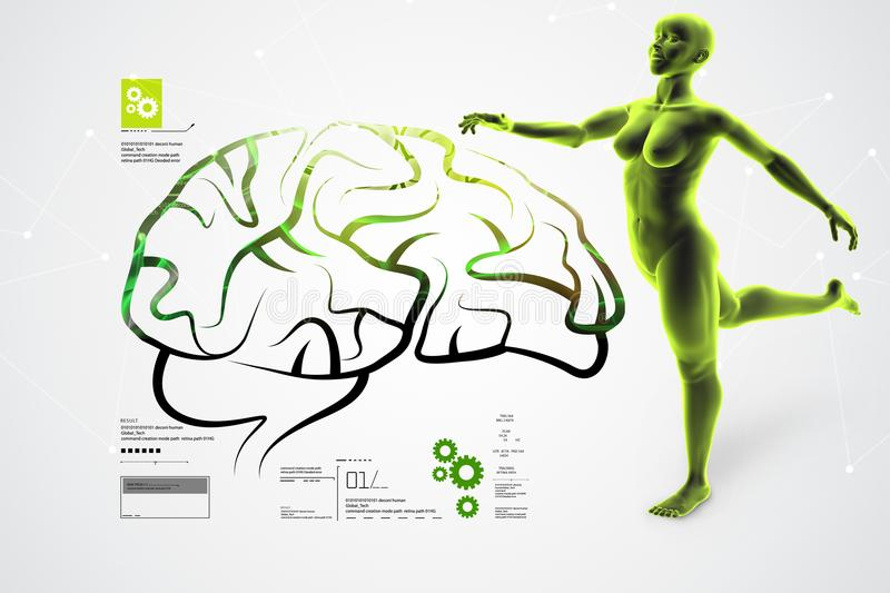 3d illustration of Human brain with female royalty free illustration
