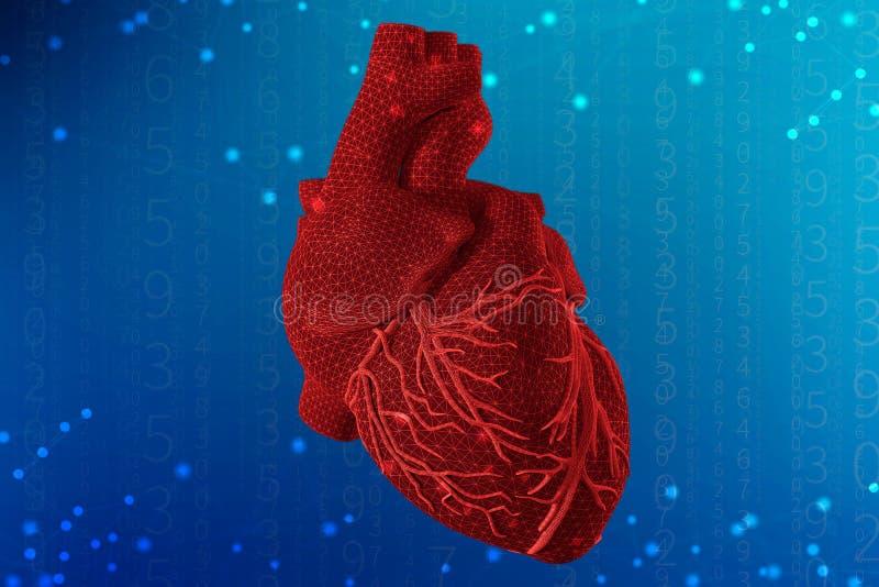 3d illustration of human heart on futuristic blue background. Digital technologies in medicine. 3d illustration of human heart with mesh texture modeling on stock image
