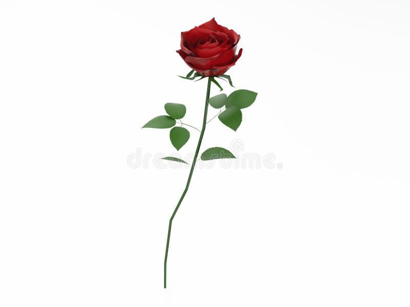 3D illustration red rose vector illustration