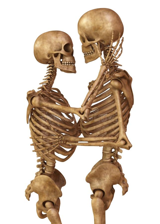 Skeletons of man and woman in the pose of lovers. Isolated on white background 3d illustration. 3D illustration Skeletons of man and woman in the pose of lovers stock illustration