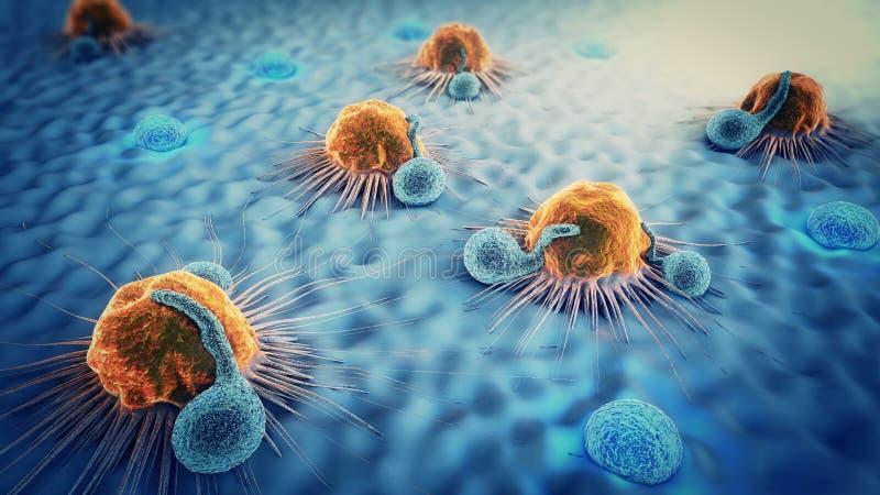 3d illustration of cancer cells and lymphocytes. 3d illustration of yellow colored cancer cells attacked by blue colored lymphocytes on blue ground royalty free illustration