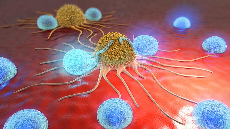 3d illustration of cancer cells and lymphocytes. 3d illustration of yellow colored cancer cells attacked by blue colored lymphocytes on red ground vector illustration