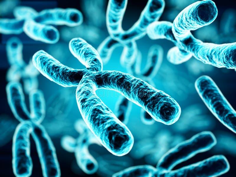 3d ilustracja chromosomy ilustracja wektor