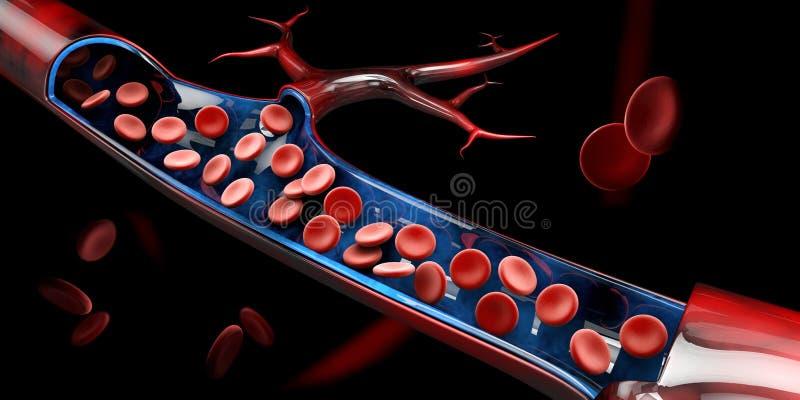 3d ilustracja czerwone komórki krwi w żyle royalty ilustracja