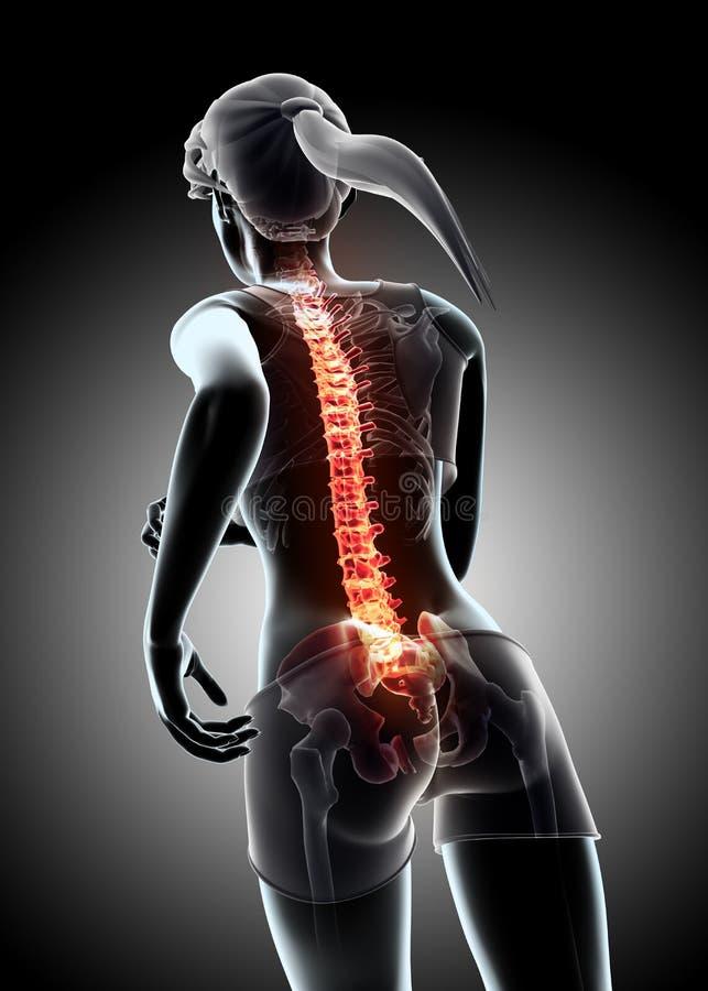 3d ilustracja - kobieta bieg i promieniowanie rentgenowskie kręgosłupa pozycja royalty ilustracja