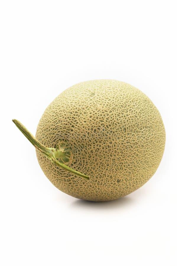 D'isolement du melon de cantaloup photo stock