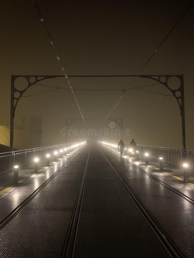 D Luiz Bridge med dimma royaltyfri foto