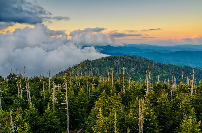 Dôme de Clingmans, Great Smoky Mountains, Tennessee photos libres de droits