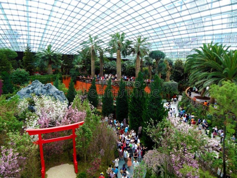 Dôme de fleur, jardins par la baie, Singapour photographie stock