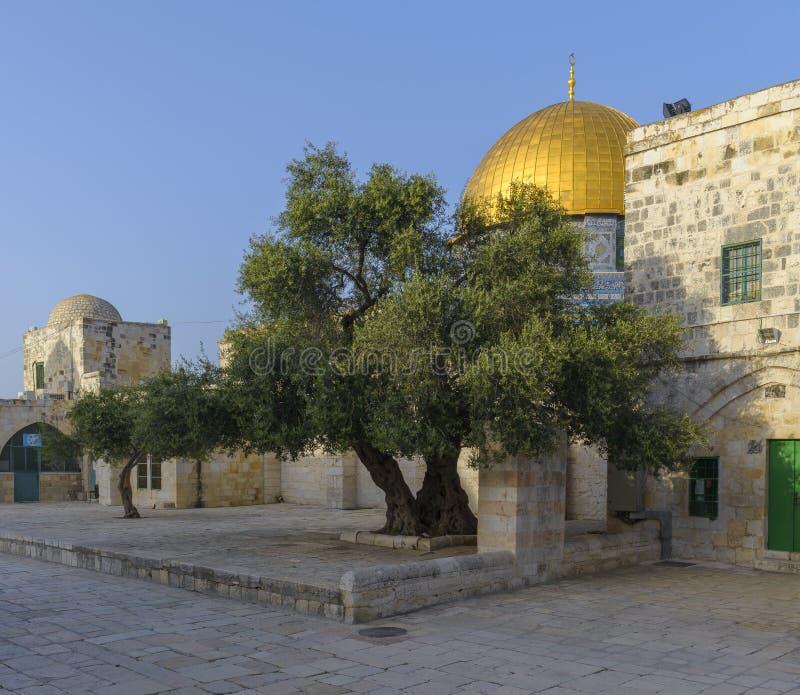 Download Dôme De La Roche Dans La Vieille Ville De Jérusalem Photo stock - Image du prière, saint: 87708180