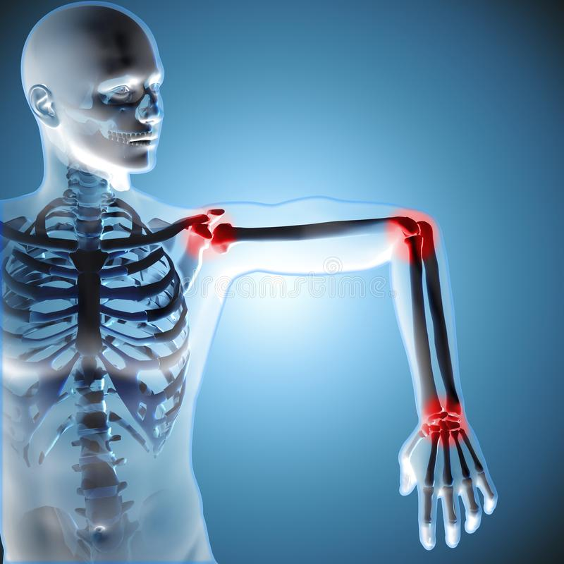 3d medical figure showing his arm joints vector illustration
