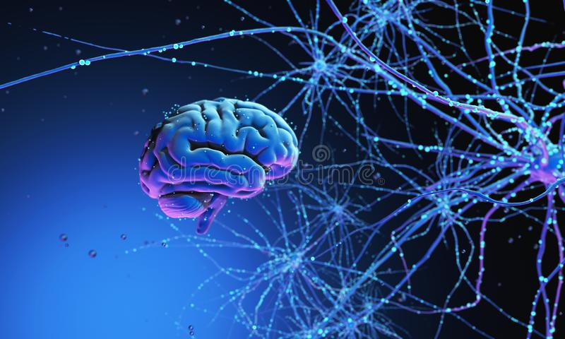 3D human brain. 3D model of the human brain on dark background surrounded by neural networks. 3d render. 3d illustration Synapses and neurons stock photos