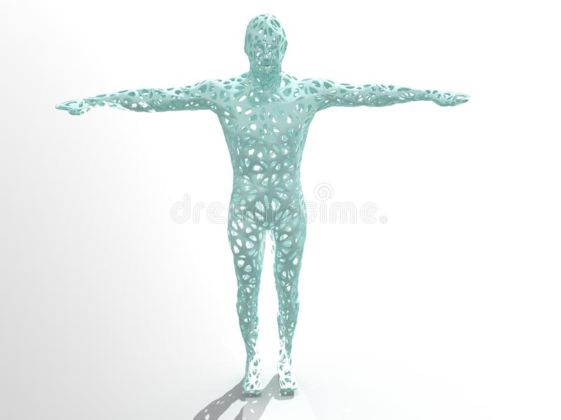 3D model human shape. 3D computer generated human shape in blue mesh on white royalty free illustration