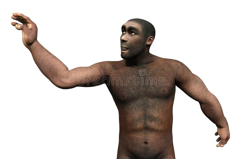3D Odpłaca się Homo Erectus na bielu royalty ilustracja