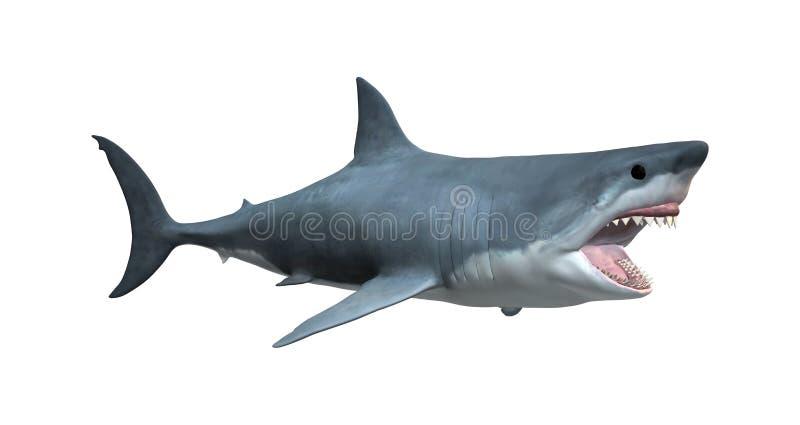 3D Odpłaca się Wielkiego białego rekinu na bielu zdjęcia royalty free