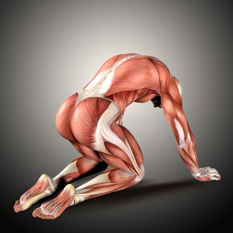 3D odpłacają się męska medyczna postać w klęczenie pozyci ilustracji