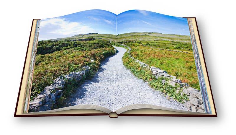 3D odpłacają się typowy Irlandzki mieszkanie krajobraz w Aran wyspie z wiejską drogą, kamiennymi ścianami i polami trawa dla past ilustracji
