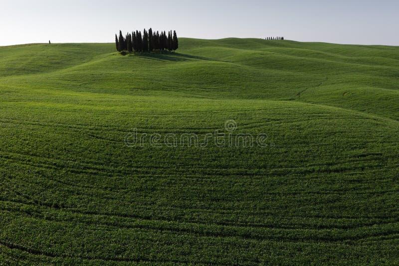d'Orcia van San Quirico - Toscanië - Italië royalty-vrije stock afbeeldingen