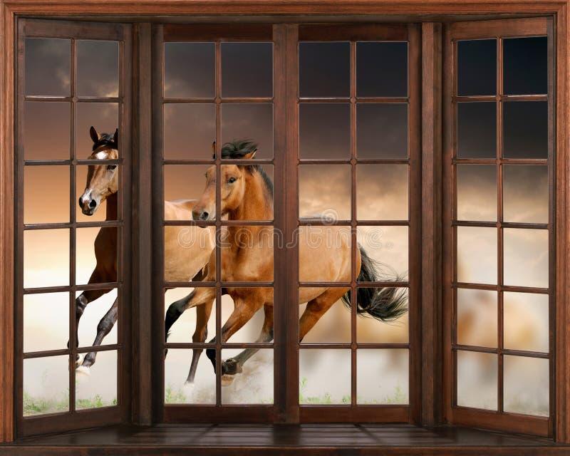 3d papier peint, chevaux fonctionnant, autocollant de mur de décalque de vue de la fenêtre 3D illustration libre de droits