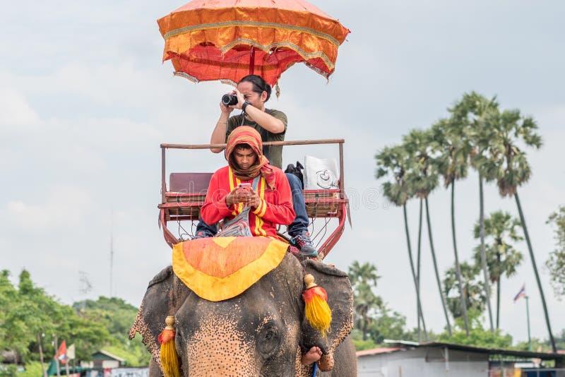 D?pendance de Smartphone Homme absorbé par le téléphone portable tout en montant un éléphant images stock