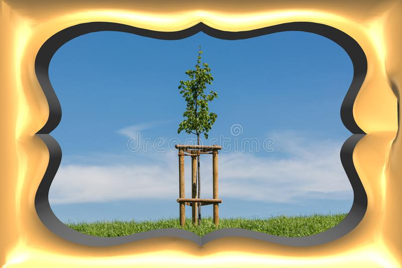 3 D picture frame. In gold in the background a meadow with tree in front of a blue sky vector illustration