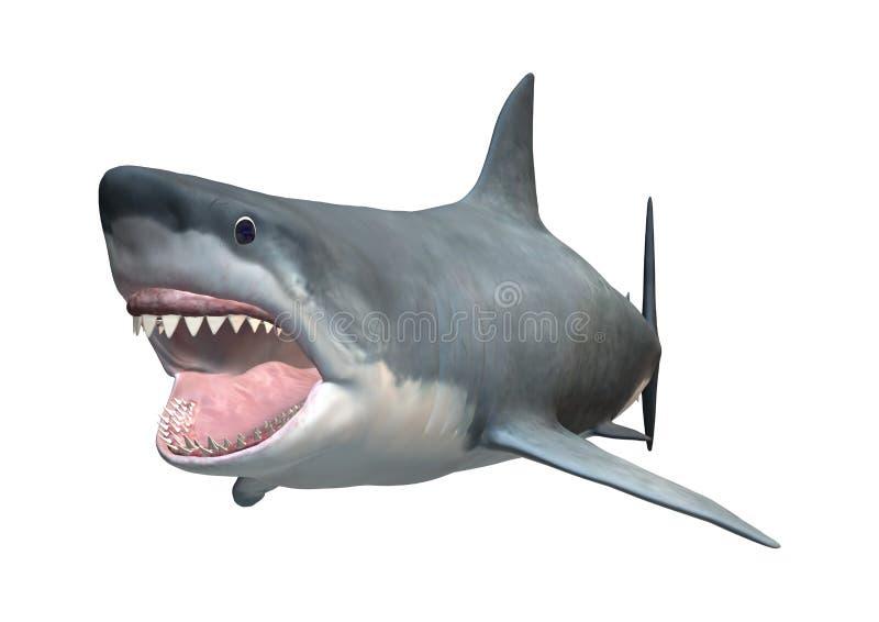 3D que rinde el gran tiburón blanco en blanco ilustración del vector