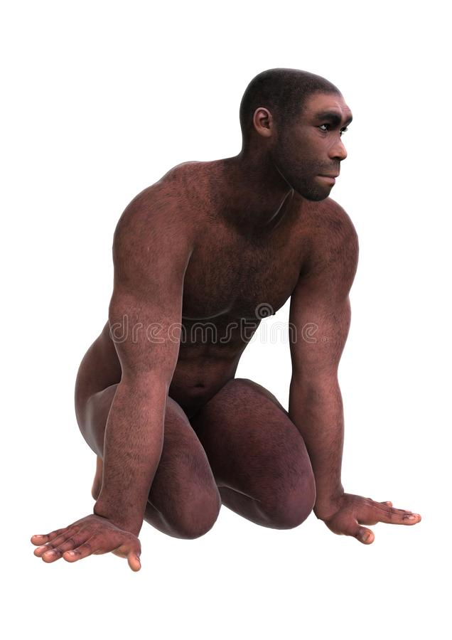 3D que rinde homo erectus en blanco libre illustration